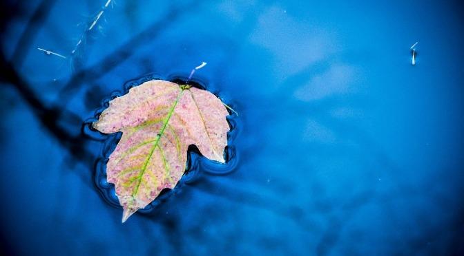 So unterstützt Dich das Element Wasser: Praktische Wassermeditation