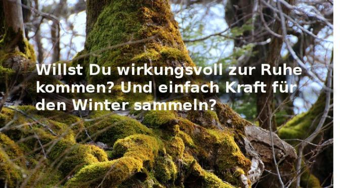 wie-du-gesund-in-den-winter-gehst-jahreskreis-wanderung-erde